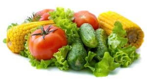 fat free diet for gallbladder